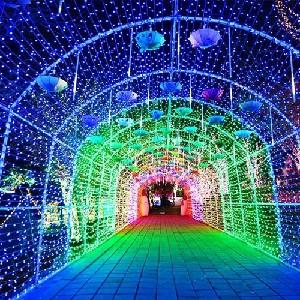 【買1送1】韓國光明洞窟+安城牧場樂園+夜游安山星光燈飾一日遊