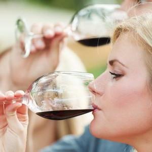 聖安東尼奧市—德克薩斯州丘陵地葡萄酒莊一日遊