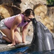 聖安東尼奧海洋世界門票,與海底最迷人的動物面對面